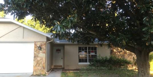 2809 Manor Hill Drive, Brandon, Florida 33511