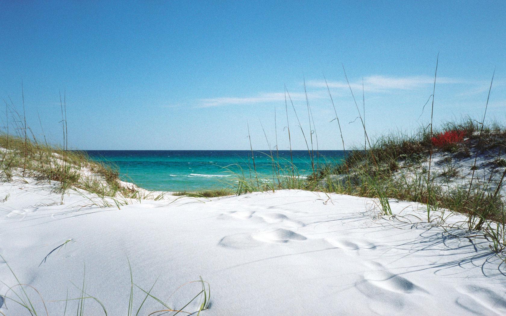 Venice Beach Florida Property For Sale